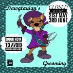 Dawgtanian's Grooming